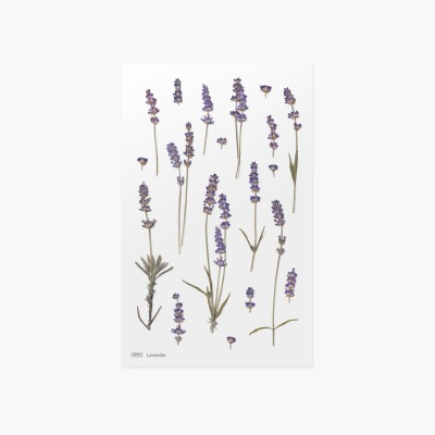 Appree Sticky Pressed Flower Sticker - Lavender