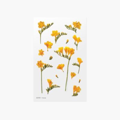 Appree Sticky Pressed Flower Sticker - Freesia