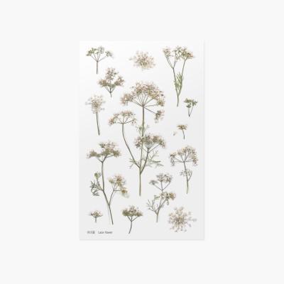 Appree préselt virág hatású matrica csipkevirággal