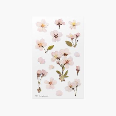 Appree préselt virág hatású matrica cseresznyefa virággal