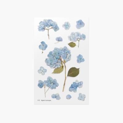 Appree préselt virág hatású matrica hortenziával