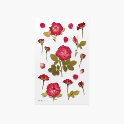 Appree préselt virág hatású matrica mini rózsával