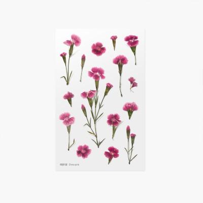 Appree préselt virág hatású matrica kínai szegfűvel