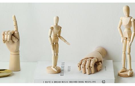 Modell fabáb és kéz